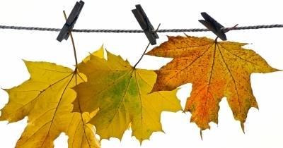 Herbstentaufenthalt
